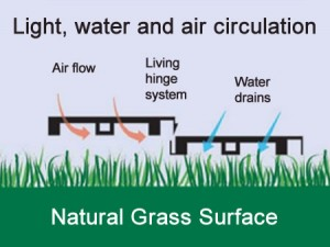 rentals-images-grass-protection